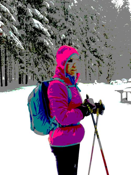 Schneelandschaft, dick eingepackte Langläuferin