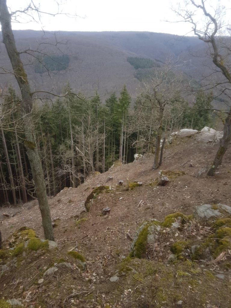 Eine Hügelkuppe mit wenig Bäumen, Steinen und Moss. Blick über eine weite hügelige Landschaft. Der Weg ist kaum zu sehen.